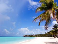 Paradise - stock photo