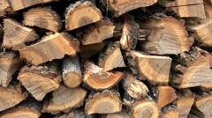 Dry chopped firewood logs in a pile. 4k uhd steadycam stock video Stock Footage