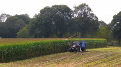 Harvesting corn for livestock silage Stock Footage