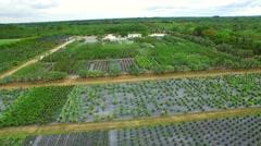 Aerial video Homestead farmland 6 - stock footage