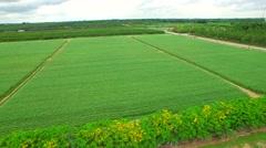 Aerial video Homestead farmland 7 - stock footage