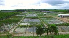 Aerial video Homestead farmland 3 - stock footage