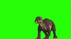 Iguanodon Stock Footage