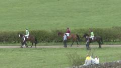Racehorses being led to the start post. Stock Footage