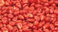 Chemically treated red corn seed ready for seeding Stock Footage