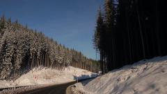 Fantastic winter landscape. Snowy  spruces. Sunny winter day. - stock footage