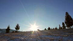 Jogging horses on top of the hill. Sunny horizon. Stock Footage