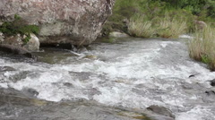 Mountain Stream After the Rains - stock footage