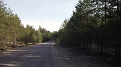 Empty road in pine forest in late spring early summer, digitally stabilized Stock Footage