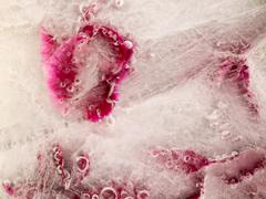 frozen abstraction - stock photo