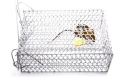 A House Mouse Trap In Mouse Trap Over White Background Stock Photos