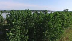 Aerial view of riverside to the river Stock Footage