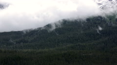 Alaska Snow Capped Mountains and Forest with Bright Mists. Stock Footage