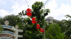 Oblong red paper chinese lanterns hanging over street, against green foliage Stock Footage