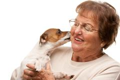Happy Attractive Senior Woman with Puppy Isolated on a White Background. Stock Photos