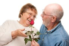 Happy Senior Couple with Red Rose Isolated on a White Background. Stock Photos