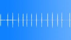 Sugar Glider Bark - sound effect