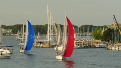 4K Annapolis Sailboats Return from Racing 2 Stock Footage