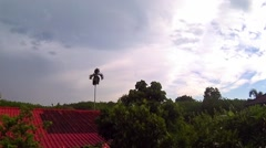 After rain time at rubber plantation, Timelapse Stock Footage