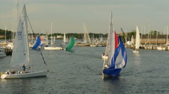 4K Annapolis Sailboats Return from Racing 4 Stock Footage