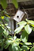 Birdhouse - stock photo