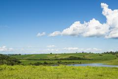 Bucolic landscape - stock photo