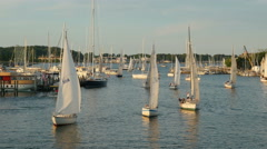 4K Annapolis Sailboats Return from Racing 9 Stock Footage