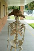 human skeleton with hat - stock photo