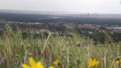 Wildflower Hill Over Denver Stock Footage