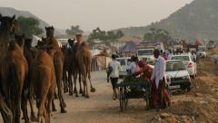 Overview of the Pushkar Camel Fair Stock Footage