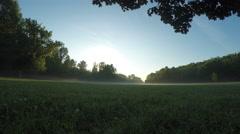Sun rays seen through ground fog time lapse Stock Footage