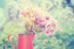 Iron pitcher with silky pink peonies - stock photo