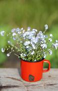Forget me not flowers in a jar on wooden background Stock Photos