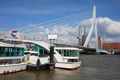 Erasmus Bridge in Rotterdam Downtown Stock Photos