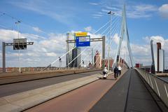 Erasmus Bridge in Rotterdam Stock Photos