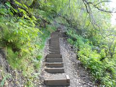 Mountain Forest Staircase - Alaska Stock Photos
