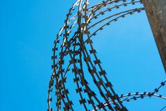 Coil of barbed wire on a concrete fence Stock Photos