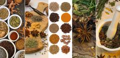 Cooking Spices - Flavoring and Seasoning - stock photo