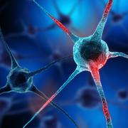 Realistic rendering of neurone - on the blue background - stock illustration