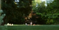 Silhouette of people at picnic in green summer park with fields of green lawns Stock Footage