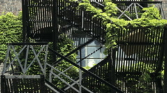 Ivy covered fire escape 2 Stock Footage