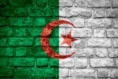 flag of Algeria - stock illustration