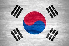 South Korea flag Stock Illustration