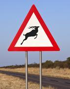 Road Sign - Danger Antelopes Stock Photos