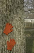 Child's gloves lost in a park brighten a winter scene Stock Photos
