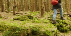 Woman walking trekking with hiking boots Stock Footage