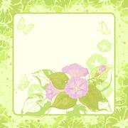 Floral background, Ipomoea - stock illustration