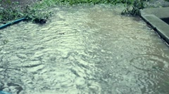 Heavy rains on water pond Stock Footage