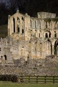 Riuns of Rievaulx Abbey - North Yorkshire - England - stock photo