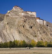 Tibet - Gyantse Fortress Stock Photos